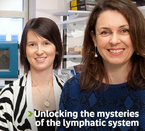 Unlocking the mysteries of the lymphatic system